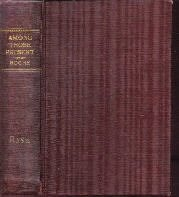 Among Those Present Arthur Somers Roche 1930 Sears Hardcover