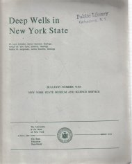 Deep wells in New York State   Bulletin no. 418A
