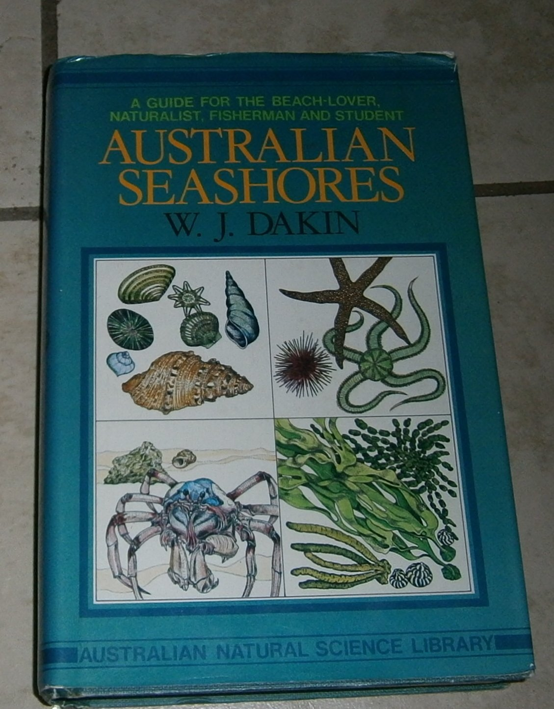Australian Seashores Guide Beach-Lover Nauralist Fisherman Student Dakin HC
