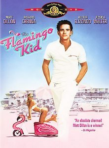The Flamingo Kid (DVD, 2003)