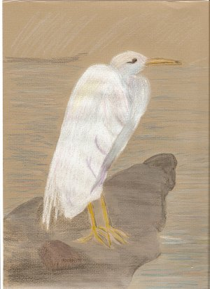 Standing By The Shore ACEO print numbered and signed