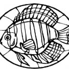 STAINED GLASS FISH Printable Coloring eBook CD | 33 Pages Coloring Sheets Book