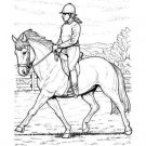 HORSES Printable Coloring eBook on CD - 31 Pages Coloring Sheets Book