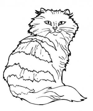 CATS Printable Coloring eBook on CD - 145 Pages Coloring Sheets Book