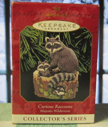 Hallmark Keepsake Christmas Ornament Curious Raccoons 1999 Majestic Wilderness #3 GB ~*~v