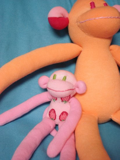 Wholesale : 10 Baby Monkeys