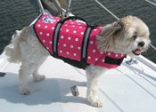 Dog Life Jacket in Pink Polka Dot