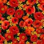 BTY Wizard of Oz Magic of Oz Orange Poppies Allover 21860 R Fabric by Quilting Treasures By the Yard