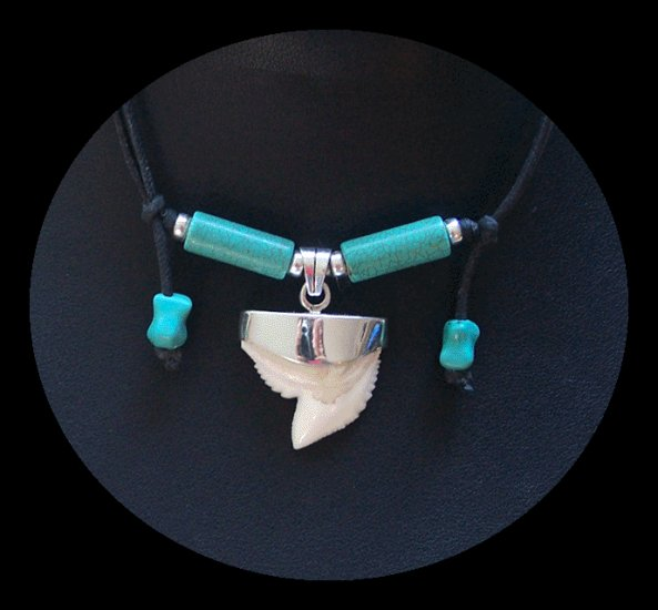 Shark Tooth Necklace with Turquoise & Silver