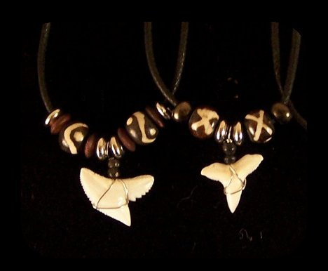 Dozen (12) Shark Tooth Necklaces with Black Beads
