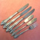 ONEIDA COMMUNITY CHATELAINE 6pc STAINLESS FLATWARE SILVERWARE