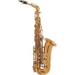 Selmer Paris Flamingo Standard Alto Sax