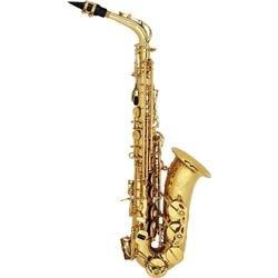 Prelude Alto Saxophone Outfit