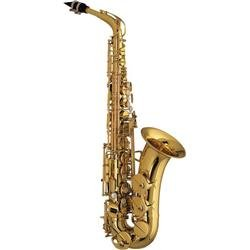 Amati AAS 32 Student Alto Sax Outfit