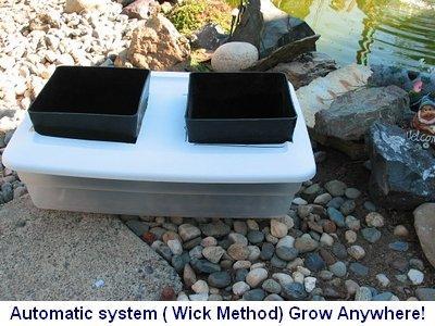 Auto Pot Style Hydroponic Plans
