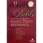 Giant Print Bible