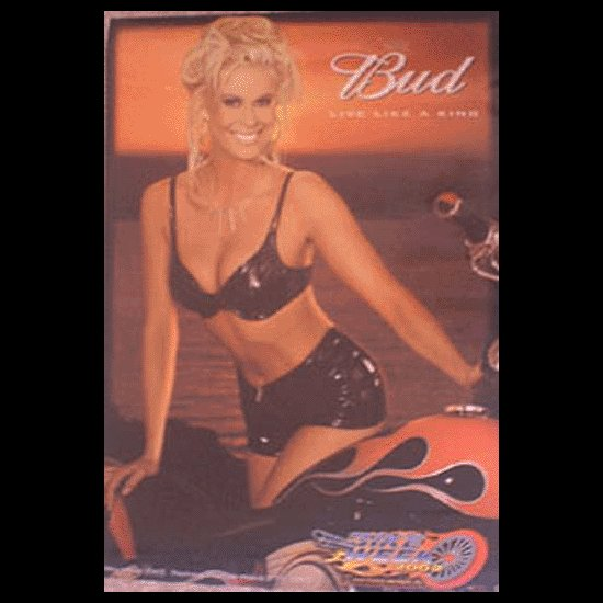 Bike Week 2002 Bud Collectible Poster