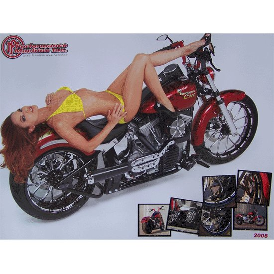 Performance Machine 2008 Biker Posters