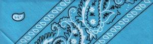 Blue Paisley - Large