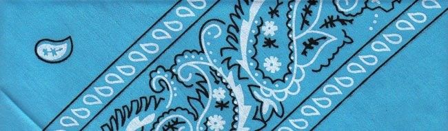 Blue Paisley - Small