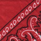 Red Paisley - Large