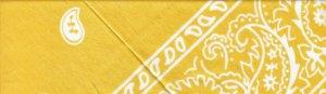 Yellow Paisley - Large