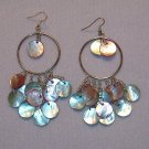 Large Hooped Shell Earrings