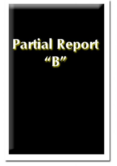 Partial Report B