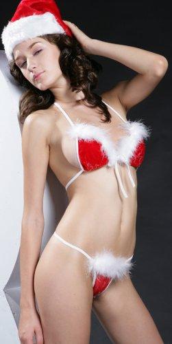 ~ Sexy 3 piece Festive Bikini ~