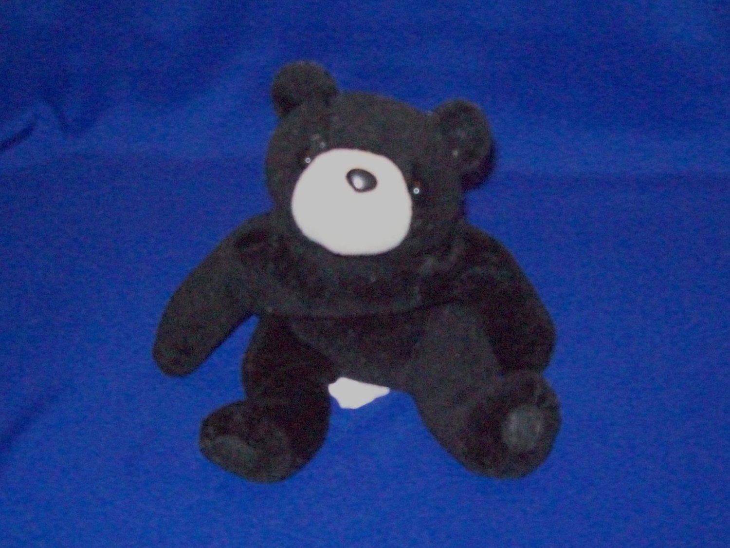 Stuffed Animals, Plush Toys, Bears - Bean Bag Black Bear with brown nose