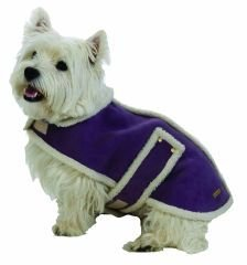 Medium Dog Suede Faux Shearling Coat - Violet