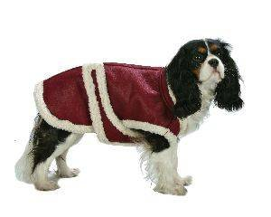 X Large Dog Aviator Leather Coat - Red