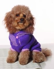XX Small Dog Striped Hoodie - Violet