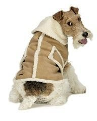XXX Large Dog Suede Faux Shearling Coat - Camel