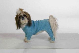 Small Dog Long John Thermal Pajamas - Blue