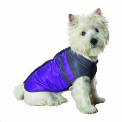 Small Dog Snow Board Ski Jacket - Blue