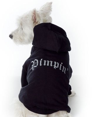 Small Dog Pimpin Hoodie - Black