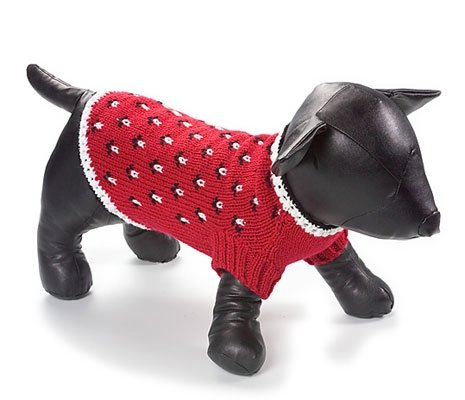 X Large Dog Professor Sweater - Red