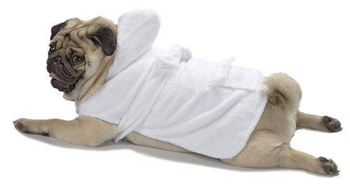 Small Dog Bath Robe - White