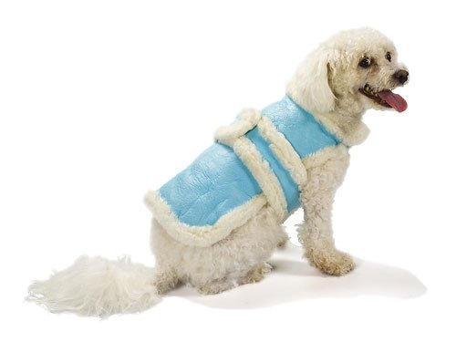 X Small Dog Genuine Shearling Coat - Blue