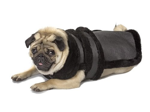Medium Dog Genuine Shearling Coat - Black