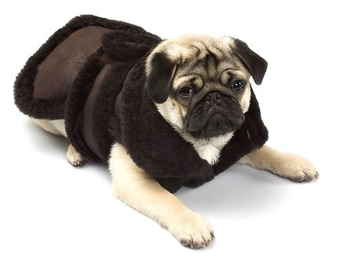 X Small Dog Genuine Shearling Coat - Chocolate