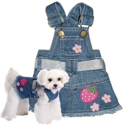 X Small Dog Denim Dress- Blue