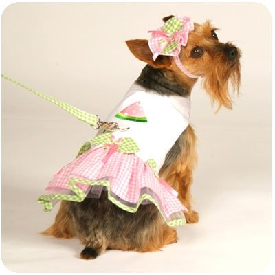 Small Watermelon Dog Dress With Hat & Leash