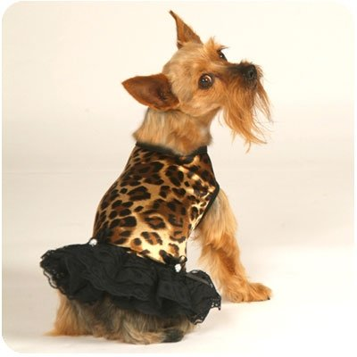 Small Leopard & Lace Dog Tank Dress With Hat