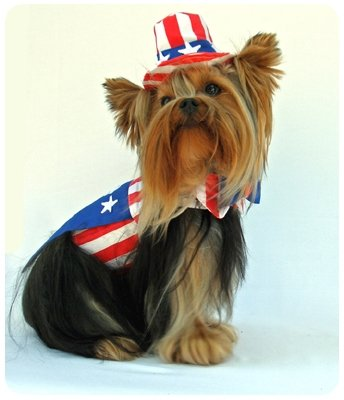 X Small Uncle Sam Dog Costume