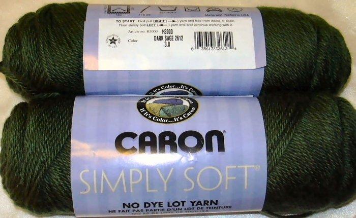Caron Simply Soft Yarn No Dye Lot 6 oz Skein - Dark Sage 9707