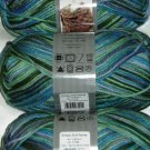 Caron Simply Soft PAINTS Yarn 4 oz Skein ~ Spring Brook 9700-4