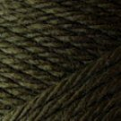 Caron Simply Soft Eco Yarn 5 oz skein ~ Forest Floor 0020