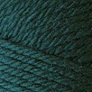 Caron Simply Soft Eco Yarn 5 oz skein ~ Pine 0021